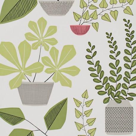 Papier Peint House Plants MISS PRINT