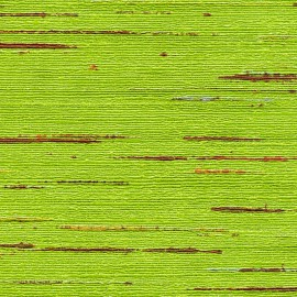 Papier peint Indiana vert clair de Elitis