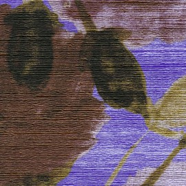 Una bella storia violet de Elitis