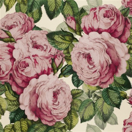 Papier peint The rose de John Derian