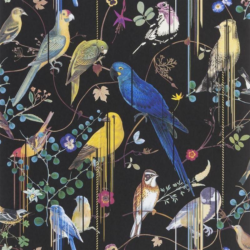 papier peint birds sinfonia christian lacroix atelier du passage. Black Bedroom Furniture Sets. Home Design Ideas