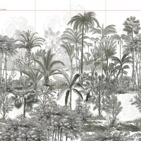 Papier peint Amazone Isidore Leroy   Atelier du passage