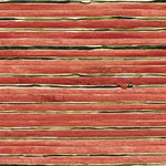 Saumon - Réf : RM 672 05