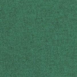 Vert Poireau- réf : TON 811